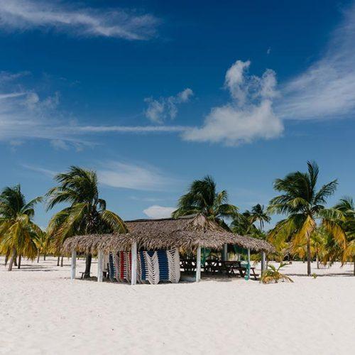Cayo Largo, spiaggia con palme