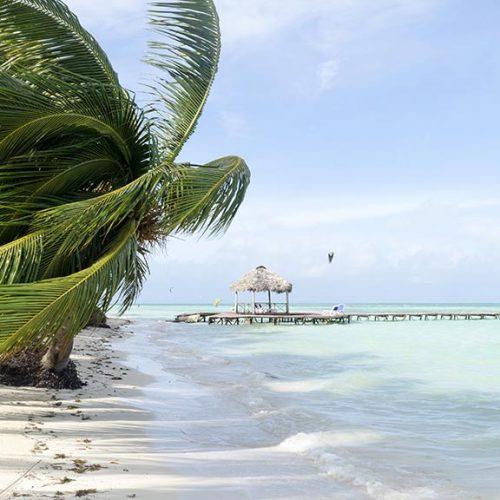 Spiaggia con palme Cayo Guillermo